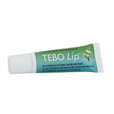 Роликовая туба с маслом чайного дерева TEBO Lip